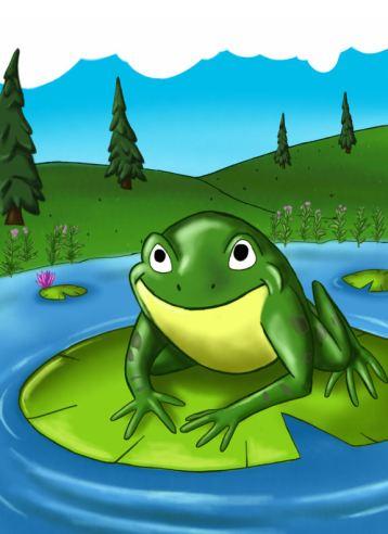 Mr. Bullfrog