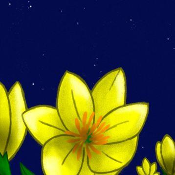 primroses1